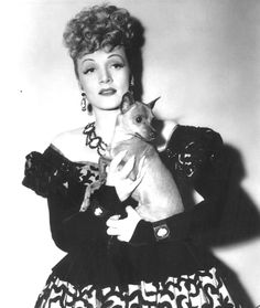 0 marlene dietrich with chihuahua