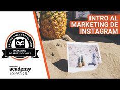 Consejos de Instagram, te apuesto a que existen funciones y trucos que aún no conoces. No esperes y empieza a crear contenido interactivo con nuestra guía.