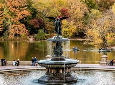 Autumn colors are popping in Central Park by @javanng - New York City Feelings