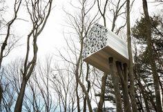 De design studio Nendo heeft zopas haar 'Tree House Bird Apartment' geopend in Nagano, Japan. Dit design huis is pas echt out of the box! Tree House Designs, Outdoor Spaces, Outdoor Decor, Construction, Bird Houses, Tree Houses, Tree Hut, Perfect Wallpaper, Innovation Design