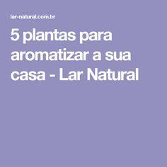 5 plantas para aromatizar a sua casa - Lar Natural