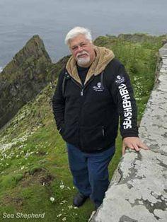 Japan Escalates Attacks Upon Captain Paul Watson and Sea Shepherd #animals #cause #donate