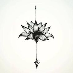 arrow lotus flower - Google Search