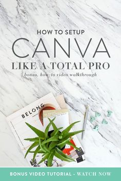 One of the key trainings in my Canva course is about setting up your computer and Canva account like a pro. As biz babes, automation and organization are key when creating graphics for our businesses. And if graphics are something you use and create on a daily basis, it's crucial that you implement these three easy steps to help you save time, be more organized and feel more confident with the time you spend in Canva.   Think Creative Collective