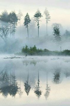 https://www.pinterest.com/pin/513340057510733261/ Posted with Post to Tumblr Saved by M.E. Galevski Open 1 comment M.E. Galevski saved to Scenery Foggy lake