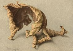 English painterEliot Hodgkin(1905-1987). Large Leaf