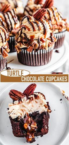 These Turtle Chocolate Cupcakes feature a chocolate cupcake that's filled with pecan caramel sauce and topped with a heavenly caramel cream cheese frosting! Gourmet Cupcakes, Cupcake Flavors, Cupcake Filling Recipes, Cupcake Recipe Easy, Pecan Cupcakes Recipe, Best Cupcakes, Cupcake Fillings, Homemade Cupcake Recipes, Turtle Cupcakes