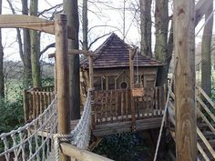 awesome tree fort, and adult friendly, bottom is a huge ...