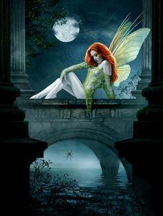 Magica noche