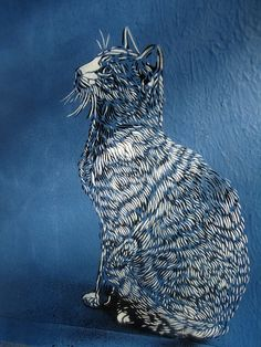Cat, by C215 (Marseille, France) -- See also at: http://www.flickr.com/photos/c215/5392418495/