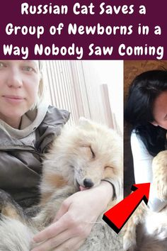 #Russian #Cat #Saves #Group #Newborns #Way #Nobody #Coming Simple Outfits, Summer Outfits, Russian Cat, Edgy Short Haircuts, Luxury Jets, Stylist Tattoos, Romantic Wedding Hair, Small Wood Projects, New Years Eve Outfits