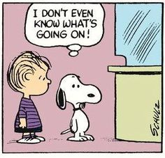 Snoopy gets me