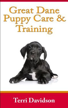 PDF Free Great Dane Puppy Care & Training: The Complete Guide On Raising, Training, Caring For Great Dane Puppies Author Terri Davidson, Cute Dog Costumes, Dog Halloween Costumes, I Love Dogs, Cute Dogs, Scary Movie Characters, Great Dane Puppy, Great Dane Crate, Puppy Care, Cartoon Dog