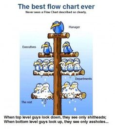 A somewhat accurate depiction of organizational structure