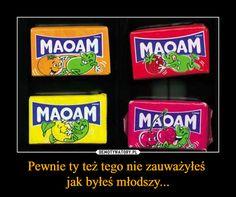 Pewnie ty też tego nie zauważyłeś jak byłeś młodszy... – Stupid Funny Memes, Wtf Funny, Polish Memes, Funny Mems, Man Humor, Funny Comics, Best Memes, Funny Photos, Jokes