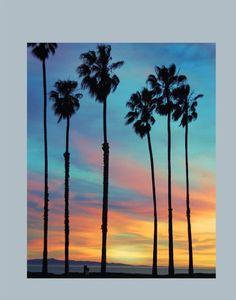 51 trendy palm tree sunset painting wall art - paint and art Sunset Canvas, Sunset Art, Beach Sunset Painting, Beach Paintings, Drawing Sunset, Tree Paintings, Sunset Beach, Easy Canvas Art, Mini Canvas Art