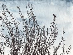 Original drawing of a bird in a tree, ink and watercolour, nature silhouette, free shipping on Etsy, $47.00
