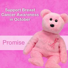 Support Breast Cancer Awareness in October with our Promise Bear