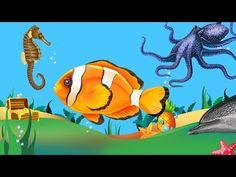 Kinderen Peuters en Kleuters leren de Zeedieren en Vissen herkennen - YouTube Ocean Themes, Tweety, Disney Characters, Fictional Characters, Doodles, Fish, Projects, Octopus, Youtube