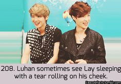 EXO Facts ♥ awwwwww Lay is so cute pie Luhan, Kai Exo, Park Chanyeol, Exo Facts, Funny Facts, Kim Minseok, Xiuchen, Exo Ot12, Exo Memes