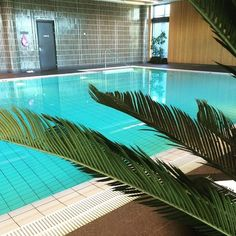 Day off!  #swiming #pool #poolday #takeiteasy  #langvikhotel http://www.langvik.fi/