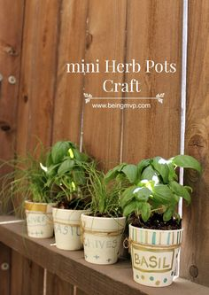 being MVP: Mini Herb Pots Craft for Kids @orientaltrading