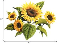 Sunflower painting, or make it into a placemat set for the dinner table! Sunflower Drawing, Watercolor Sunflower, Sunflower Leaves, Sunflower Clipart, No Rain, Flower Images, Old Postcards, Vintage Flowers, Flower Power