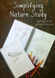 Simplifying Nature Study, common sense tips for making nature study enjoyable and educational, but not overwhelming - A Better Way to Thrive Study Journal, Nature Journal, Reggio, Montessori, Nature Activities, Science Activities, Environmental Education, Primary Education, Nature Study