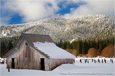 End Of Winter Barn, Mt. Shasta, California