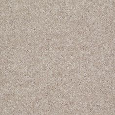 Carpet for the third bedroom (Go To Town - Color Pebble Trail Texture 12 ft. Carpet-HDD7272105 - The Home Depot)