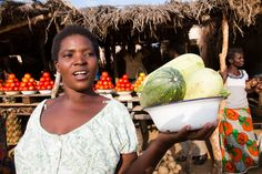 iDE UK working in Zambia. Helping promote farming and gender equality for woman and men. www.ide-uk.org/