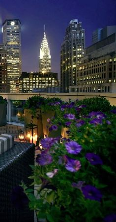 Sofitel Rooftop Bar & Lounge with a View of the Chrysler Building in the Distance. It is Located at 45 West 44th Street, NYC, NY.