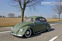 VW Beetle TSL598