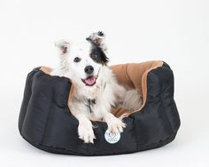Loving Care Pet Products Ultra Supreme Pet Bed * Tried it! Love it! Click the image. : dog beds