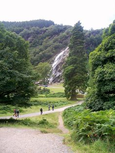 Through Djouce Woods to Powerscourt Waterfall, Enniskerry, Co. Wicklow.