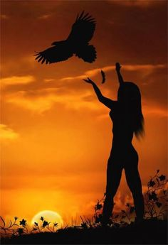 Freedom your dreams......