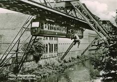 In a circus elephant jumped out of a monorail train in Wuppertal, Germany. The elephant lived. Old Photos, Vintage Photos, Trains, Photos Rares, Rare Historical Photos, S Bahn, Foto Art, Train Rides, End Of The World