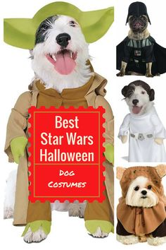 7aa0b95ac26 Best Star Wars Halloween Costumes for Dogs