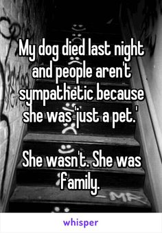 My dog died last night and people aren't sympathetic because she was 'just a pet.'   She wasn't. She was family.