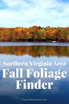 Northern Virginia Fall Foliage Best Places To See Colors In The Region