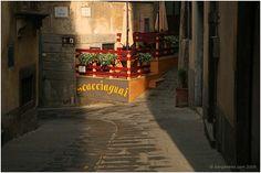 SCACCIAGUAI:  Via di Mezzo, 25  Barga (Lucca)  tel: +39(0)583 711368