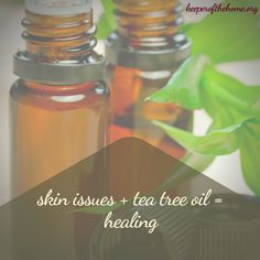 Tea tree oil is great for lots more than just curing and preventing infection! Here's 25 uses for tea tree oil, and why you need it in your natural remedies kit! Tea Tree Oil Uses, Tea Tree Oil For Acne, Best Acne Products, Plant Therapy, Skin Care Remedies, Health Remedies, Chamomile Tea, Healthy Oils, Oil Benefits