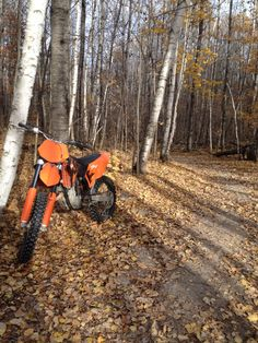 2006 ktm 250sxf on two track in the Paul Bunyan state forest, Minnesota.