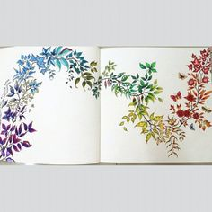 Johanna Basford | Colouring Gallery Secret Garden Coloring Book, Coloring Book Art, Colouring Pages, Adult Coloring Pages, Enchanted Forest Book, Enchanted Forest Coloring Book, Enchanted Garden, Pencil Colour Painting, Graf Von Faber Castell