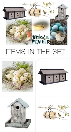 """""""BIRDS OF A FEATHER"""" by lizzyslegs ❤ liked on Polyvore featuring art"""