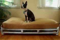 To DIY a cute dog bed, use a crib mattress, a fitted sheet, and a wooden pallet.