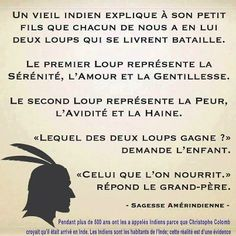 Nourrit le bon loup et ta vie sera belle. Words Quotes, Life Quotes, Sayings, Quote Citation, French Quotes, Visual Statements, Some Words, Positive Attitude, Positive Life