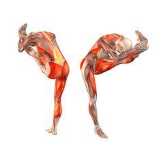 Standing bend to left leg - Utthita Hasta Padangustasana with bend to left leg - Yoga Poses | YOGA.com