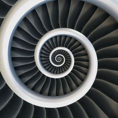 Spiral Jet Engine. Awesome design in the same style as the New Zealand Koru and exactly like a unfolding fern frong
