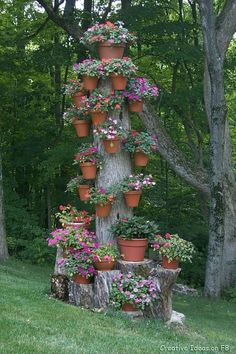 Tree stump flower pots
